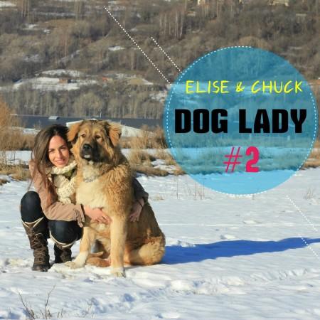 Dogladycarre