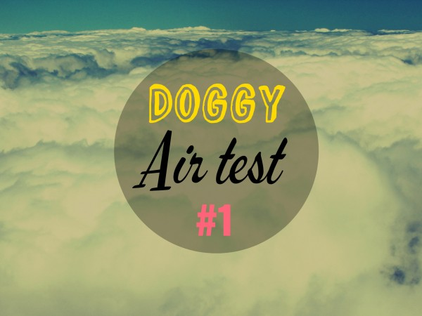 Doggy air test 1
