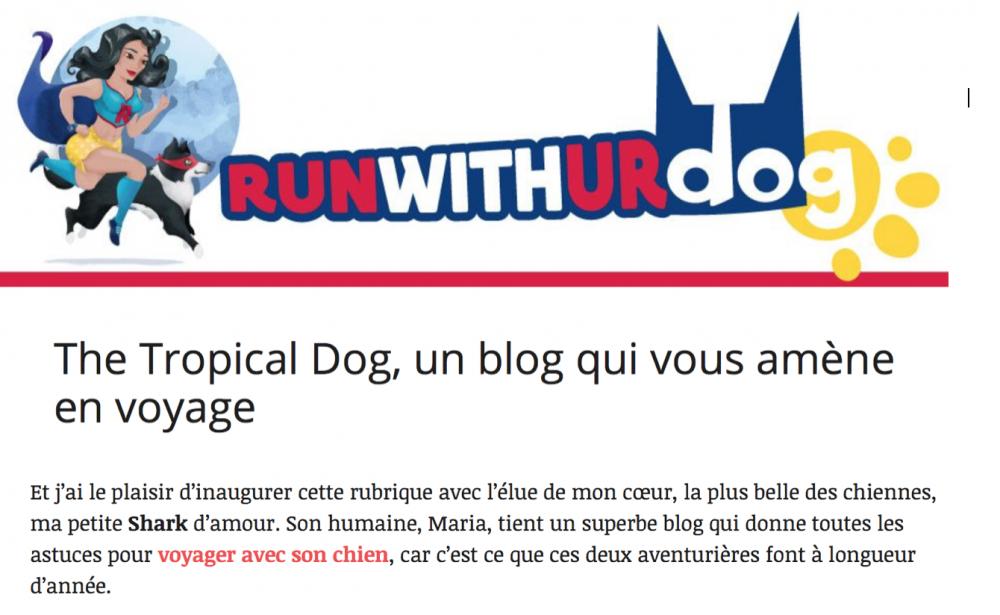 the tropical dog runwithurdog