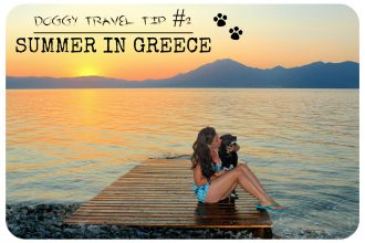 Doggy travel tips summer in Greece