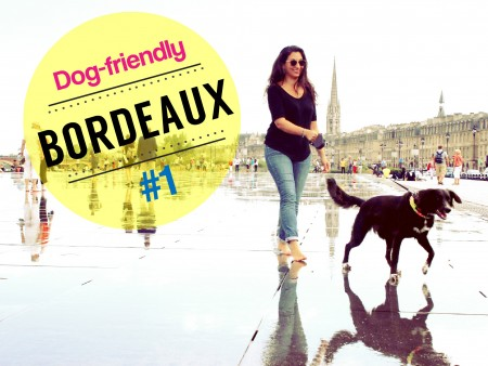 Bordeaux dogfriendly1