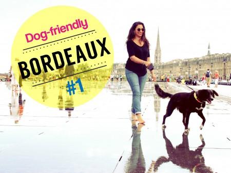 Bordeaux dogfriendly1