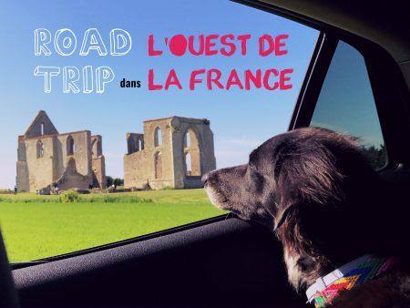 voyager en france avec un chien