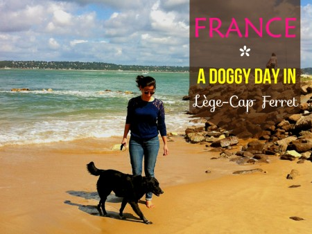 A DOG FRIENDLY DAY IN CAP FERRET