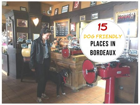 dog friendly places in Bordeaux