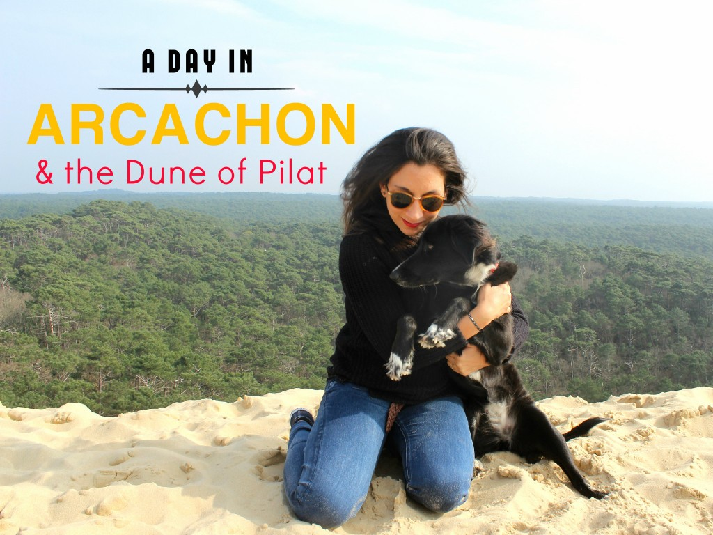 A Day In Arcachon And The Dune Of Pilat The Tropical Dog