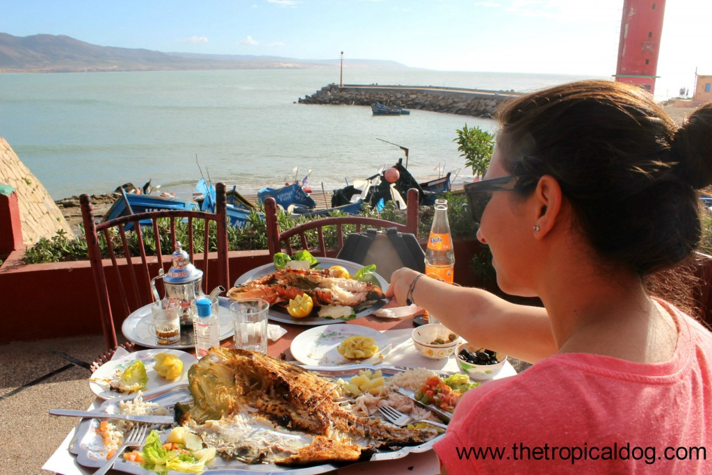 Maroc 3 imsouane the tropical dog - Restaurant l huitre y est port des barques ...