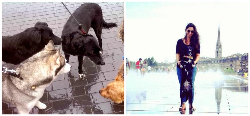 Sociabilisation canine - Sur le miroir d'eau, quais de la rive gauche