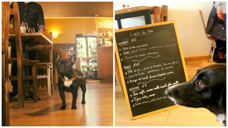 Bordeaux dog friendly