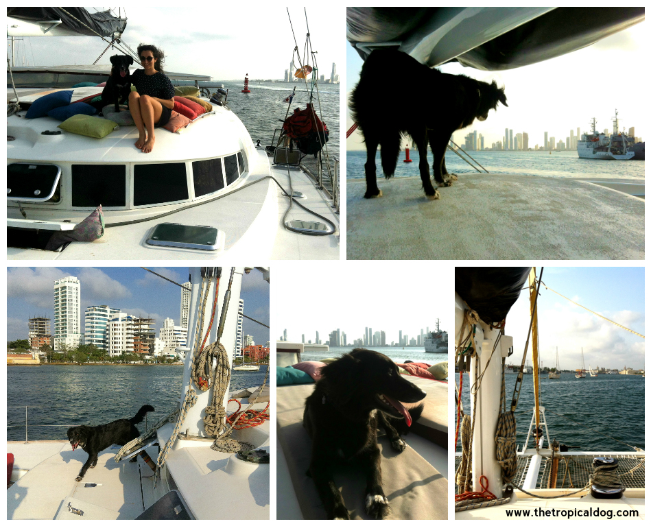 Boat trip in Cartagena