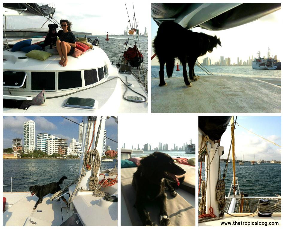 Boat trip in Cartagena
