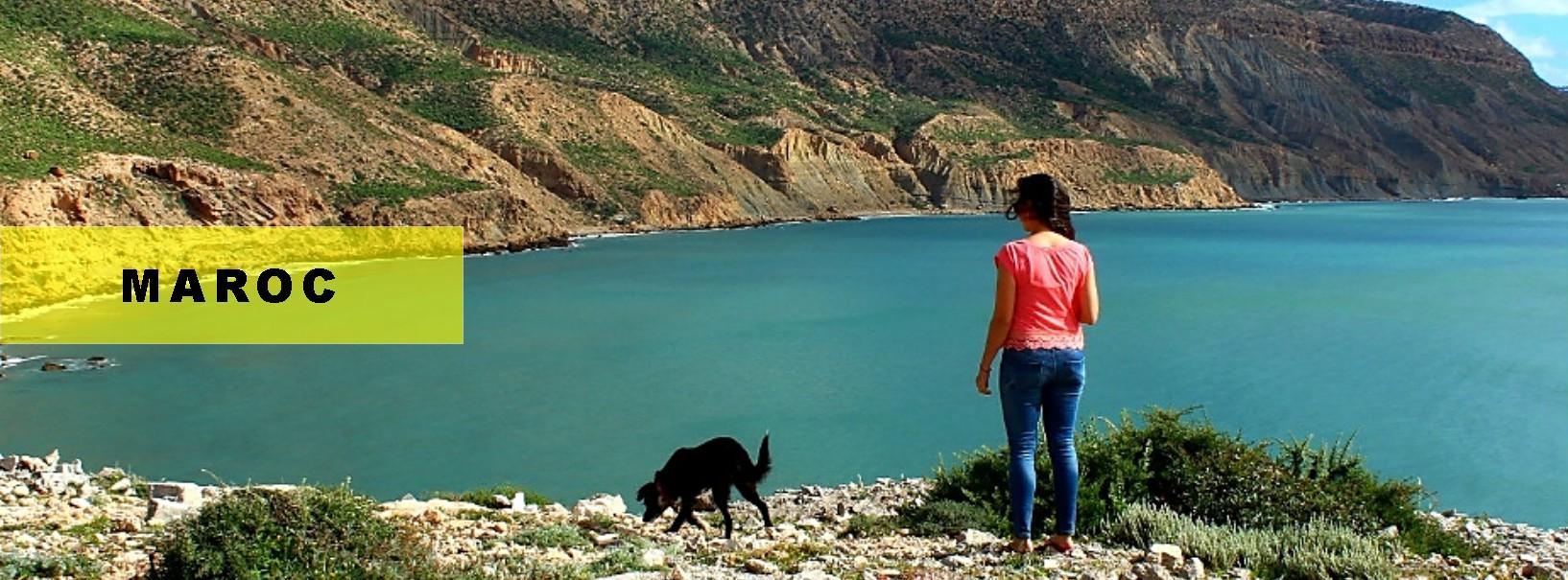 voyager avec un chien au maroc