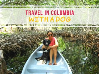 travel in colombia with a dog