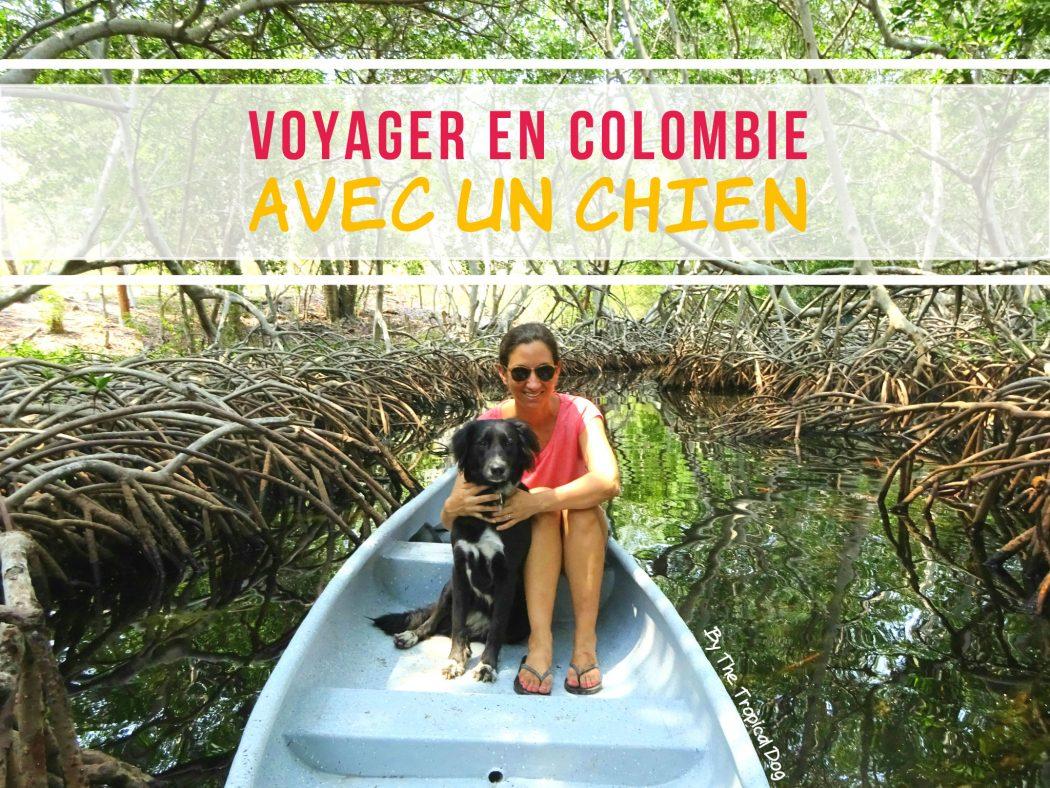 Voyager en Colombie avec un chien