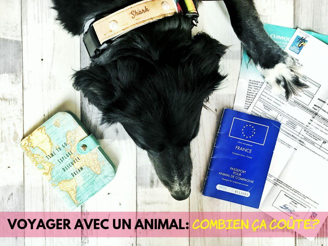 voyager avec un animal combien ça coute