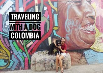 Traveling with a dog in Colombia
