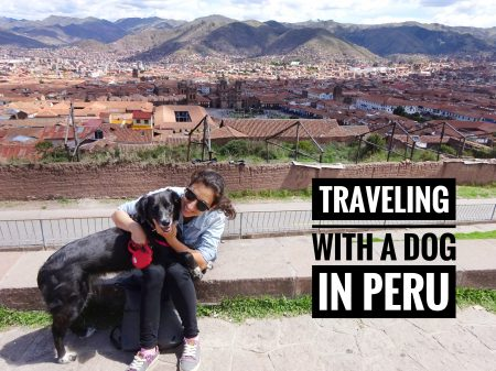 Traveling with a dog in Peru