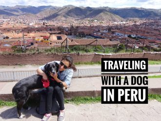 Traveling with a dog in Peru 1