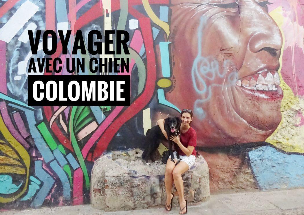 voyager avec un chien en Colombie