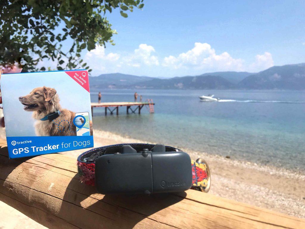Traceur GPS Tractive pour chiens